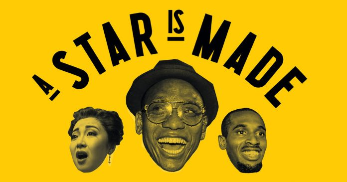 Learning With: 'A Star Is Made: 12 Performers Show What It Takes to Light Up the Stage in New York City'