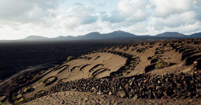 Roaming Through Lanzarote's Otherworldly Vineyards