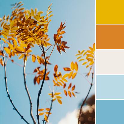 Color Love   Mustard, Burnt Orange & Sky Blue