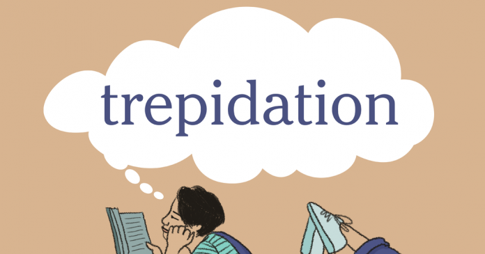 Word of the Day: trepidation