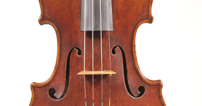 Mycowood Violins: A Different Kind of Time Machine