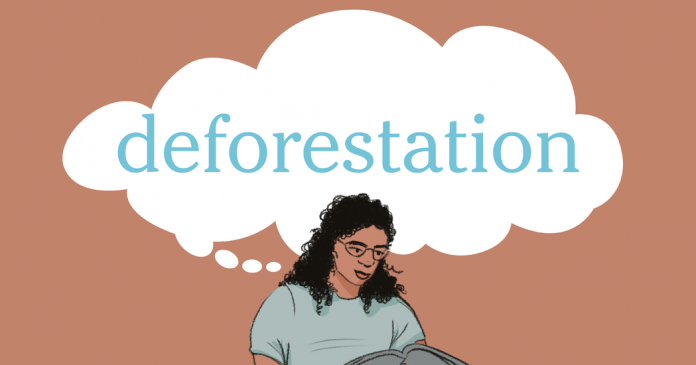 Word of the Day: deforestation
